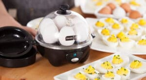 Best Egg Cooker 2020 Top Full Guide, Review