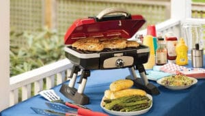 Best Portable Gas Grill 2020