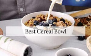 Best Cereal Bowls 2021 Top Brands Review