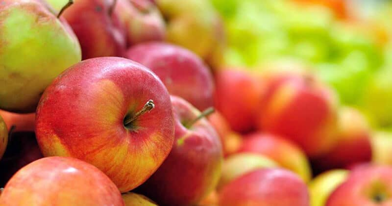 CHOOSING THE Ideal APPLE VARIETY